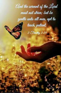 AND THE SERVANT OF THE LORD MUST NOT STRIVE BUT BE GENTLE UNTO ALL MEN APT TO TEACH
