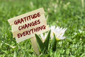 GRATITUDE CHANGES EVERYTHING GRATITUDE CHANGES EVERYTHING WOODEN SIGN GARDEN SPRING FLOWER B AB